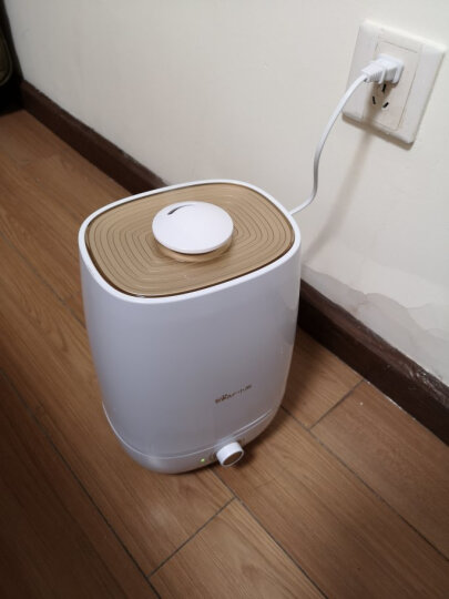 小熊(Bear)加湿器 5L大容量 家用静音 卧室办公室空气加湿器 家用迷你香薰加湿JSQ-A50U1 晒单图