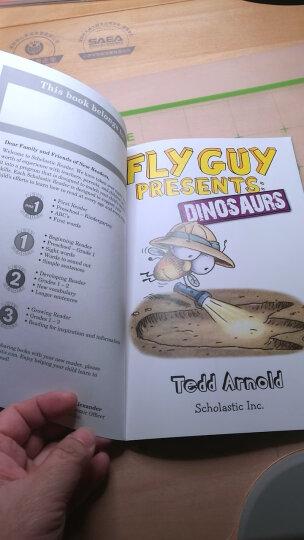 Fly Guy Presents: Dinosaurs  苍蝇伙计现场报道:恐龙 英文原版 晒单图