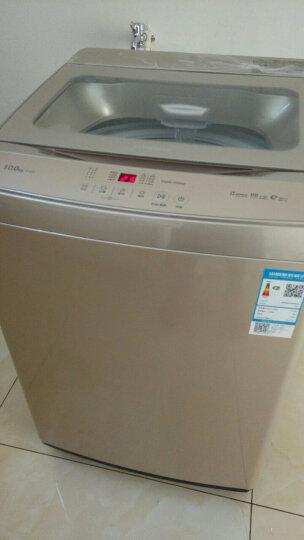 创维(SKYWORTH)波轮洗衣机全自动 不锈钢内筒 空气阻尼减震 安心童锁 10公斤(炫金)T100U 晒单图