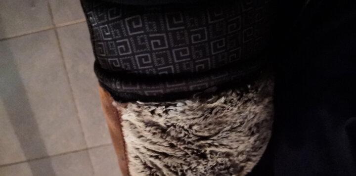 POLOGEAR保暖裤男5层加厚羊驼绒保暖裤女 兔绒护膝抗寒外穿棉裤中老年保暖内衣男 兔毛男款 XXXL 晒单图