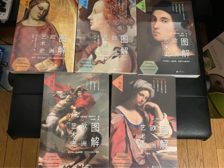 图解欧洲艺术史:16世纪(文艺复兴、威尼斯、拉斐尔与解剖学) 晒单图