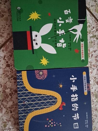 德国经典专注力亲子游戏书:玩出来的逻辑思维力(爆笑魔力找错书全3册)北斗儿童图书 晒单图