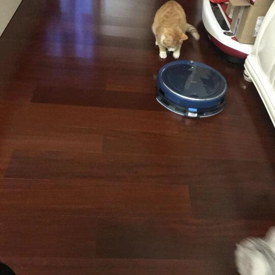 海尔(Haier)扫地机器人 伯爵 手持版 自动APP智能规划式 拖地擦地一体机宠物家用吸尘器 TAB-JD5F0LSC 晒单图