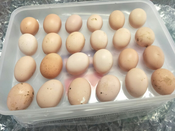 家の物语 日本加厚可叠加24格带盖鸡蛋盒冰箱保鲜盒塑料收纳盒 1个装 晒单图