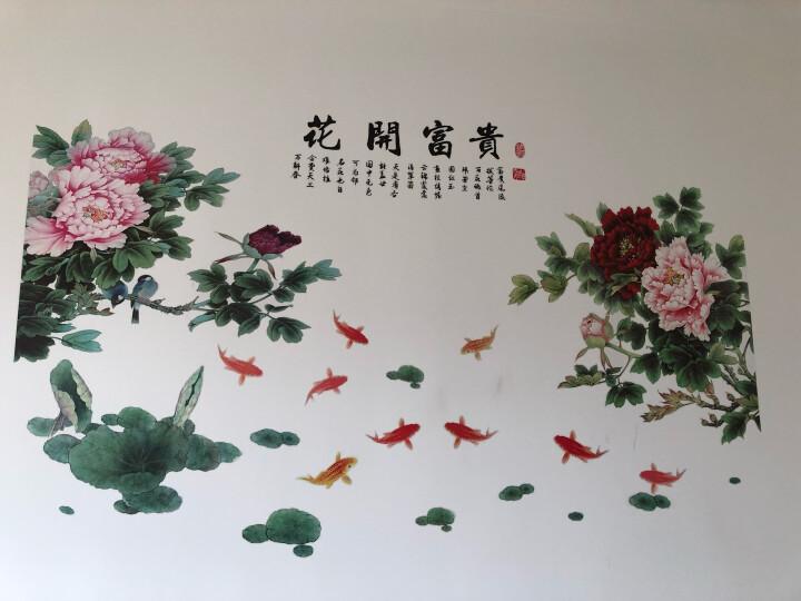 墙彩 牡丹花墙纸自粘贴画典雅客厅卧室自粘贴花房间壁纸背景墙装饰品防水贴纸 晒单图