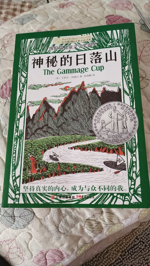 长青藤国际大奖小说:木头娃娃的旅行(纽伯瑞儿童文学金奖) 晒单图
