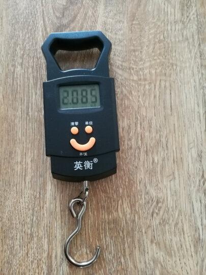 英衡 迷你称重电子称 手提秤50kg电子秤便携式高精度快递称弹簧秤 50KG 晒单图