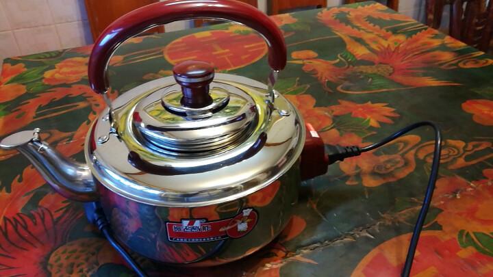 振能(ZHENNENG) 呱呱水壶 6L大容量 自动鸣音 不锈钢烧水壶 电磁炉煤气炉通用 22cm 4L带电水壶 晒单图