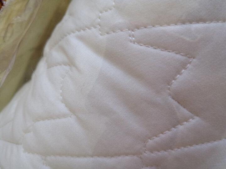 艺被床笠单件床罩纯棉全棉夹棉加厚防滑床照床垫套罩席梦思床套保护白色加棉榻榻米床签酒店宾馆2米床加大 千鸟格侧围高30厘米 1.8米宽2米长 晒单图