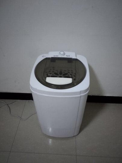 志高(CHIGO)  9.8公斤 脱水机甩干机家用不锈钢甩干桶迷你小型干衣机 6.8公斤蓝色(钢桶) 晒单图