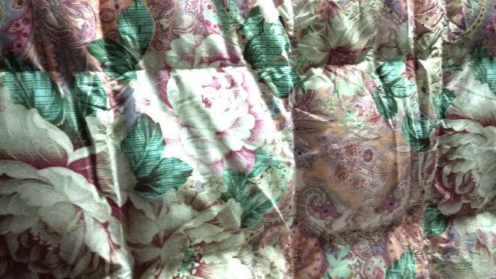 富安娜家纺 鹅绒被羽绒被子冬天被芯95%白鹅绒双人床冬厚被 印花款 1.8m(230*229cm) 晒单图