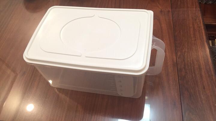 日本进口inomata米桶米箱 防潮防虫面桶 厨房储米箱五谷杂粮储物箱 翻盖米桶米柜米缸5公斤装透明 带滑轮 晒单图