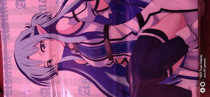 萌羽(moeyu) 尼尔机械纪元路人女主黄漫老师纱雾约会异世界雷姆魔法书动漫靠枕双面抱枕靠垫 fgo冲田总司款 2wt-面料35*55cm(双面图案,含枕芯) 晒单图