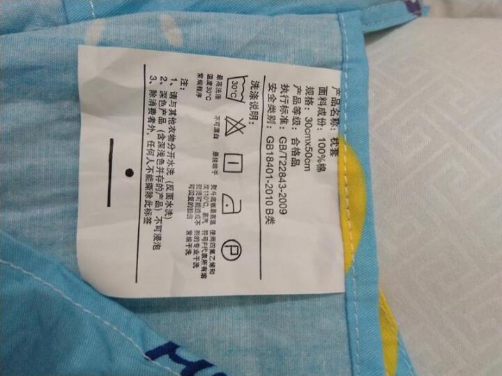 马图腾 乳胶枕头枕套 冰丝枕套夏季凉枕儿童枕套小枕头套 记忆枕套卡通婴儿单人学生枕套枕芯青少年枕头 旅行家 50*30*7/10cm单个枕套(不含芯) 晒单图