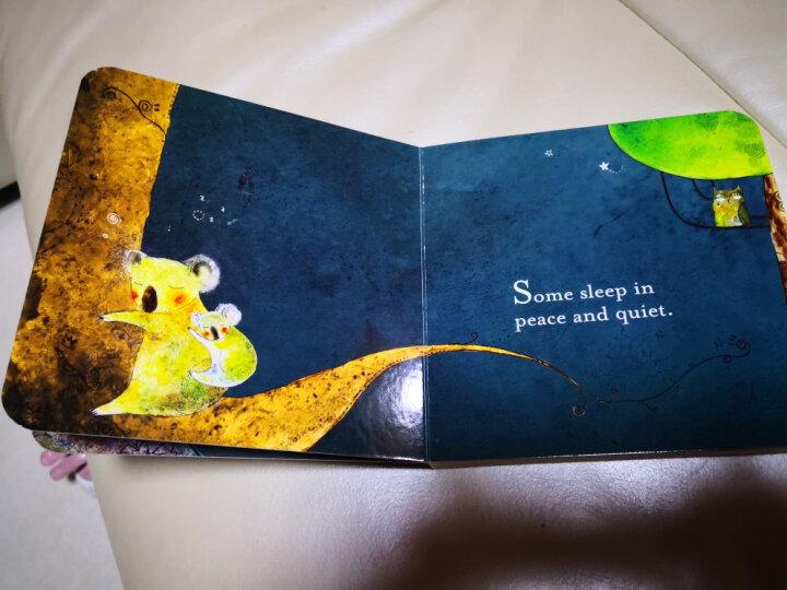 A Book of Sleep睡眠书 英文原版 晒单图