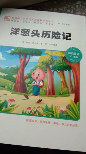 小学生成长必读丛书(注音彩图版):中国神话故事 晒单图