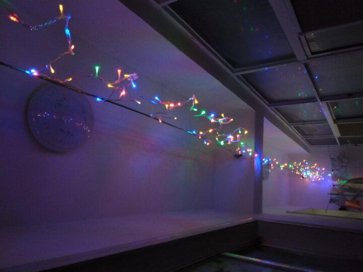 京唐 彩色蝴蝶LED灯小彩灯闪灯串灯 婚庆房间布置装饰门厅走廊室外庭院花园挂灯 3米长51个灯头 晒单图