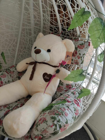 阳光猴陪伴大号泰迪熊公仔抱枕抱抱熊毛绒玩具熊猫布娃娃女孩大熊玩偶生日礼物女生 新款紫色围巾熊(送仿真玫瑰) 1米 晒单图