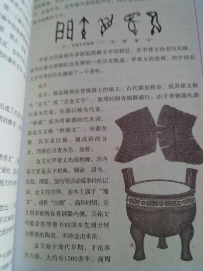 我们的文字/中国记忆丛书 晒单图