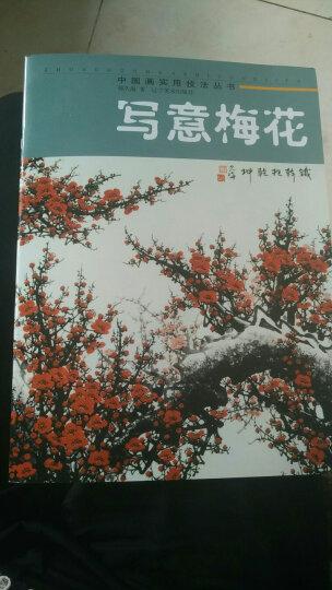 中国画实用技法丛书:写意梅花 晒单图