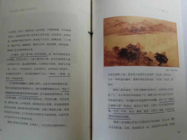 未名·幽雅阅读丛书·生命清供:国画背后的世界(第2版) 晒单图