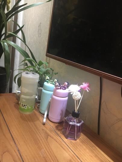 LOVO 罗莱生活出品杯子水杯保温杯保冷杯茶杯 蝴蝶结不锈钢 粉紫色 晒单图