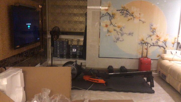 美国爱康划船机41016/R600家用静音可折叠健身运动器材风阻划船器 原装正品 晒单图