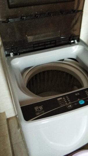 统帅(Leader) 海尔出品 8.5公斤波轮洗衣机全自动 家用大容量 整机三年免费保修 @B85M2S 晒单图