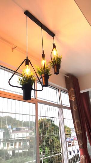 誉璇 北欧风格植物吊灯具复古工业风创意个性服装店奶茶店餐厅灯北欧铁艺花盆灯 花瓶形+爱迪生灯泡暖光 晒单图