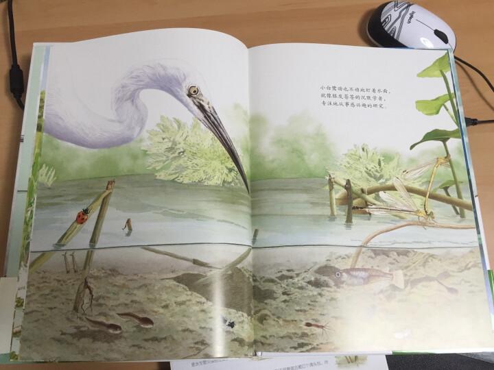 耕林童书馆:鸟瞰地球 晒单图