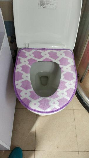 芳草地 马桶垫加厚坐便垫套粘扣式坐厕垫马桶圈 可水洗3件套  颜色款式随机 晒单图