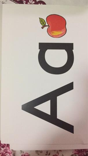 新概念英语单词卡(青少版)(入门级A) 晒单图