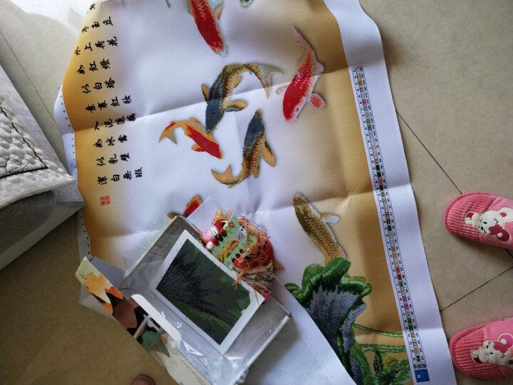 刺绣十字绣客厅新款印花3D十字绣线绣刺绣自己绣九鱼图花草系列大画2米富贵有余荷花 小版棉线--150x60厘米  送实用工具包 晒单图