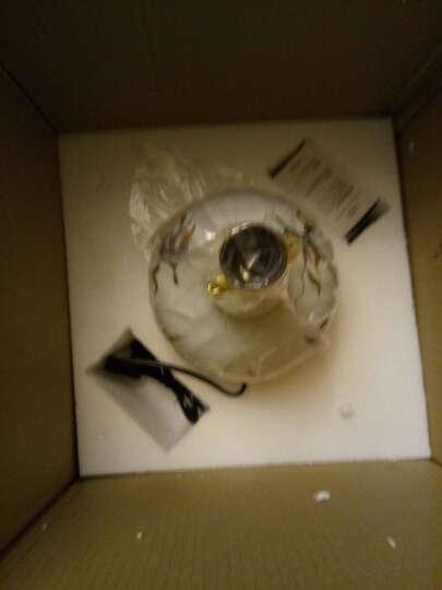 圣玛帝诺 美式台灯卧室床头灯 客厅书房全铜陶瓷台灯新中式彩绘花鸟装饰台灯 AV-1275大号蓝色按钮 晒单图