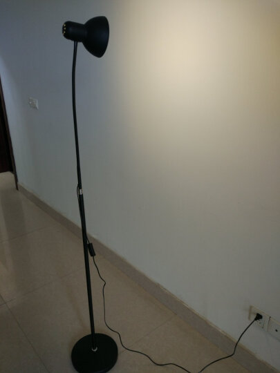 道远亮眼睛 LED落地灯补光灯 5W暖光 客厅书房简约工作钢琴阅读铁艺美式落地台灯 ML606黑色 晒单图