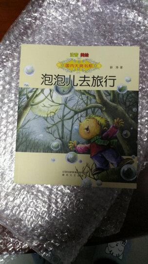 国内大奖书系 注音美绘 泡泡儿去旅行 儿童书籍6-7-8-9-10-12岁一二三年级 晒单图