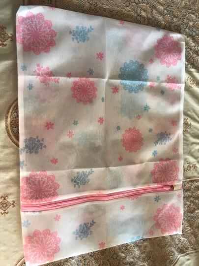 美丽雅 衣物洗护袋文胸内衣外套洗护袋家用大号细网防变形1只装 晒单图