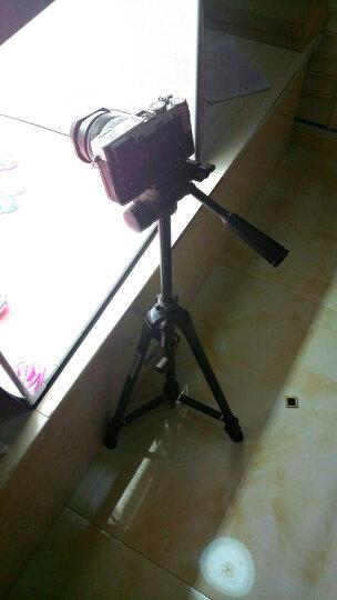 伟峰(WEIFENG)WF-318B 带蓝牙便携迷你脚架 手机自拍支架 视频会议桌面 单反微单卡片相机摄像机微距角架 晒单图