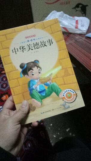 中华美德故事(注音美绘本)/小学语文新课标必读丛书 晒单图