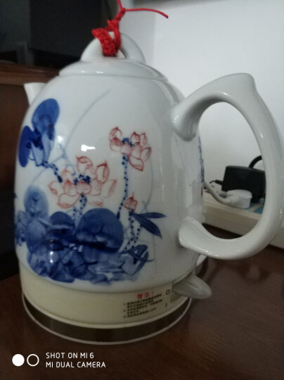 一家欣FQJ-1564烧水壶手绘陶瓷电热水壶茶壶茶具自动断电304不锈钢景德镇高温陶瓷壶体 1564手绘竹韵 晒单图