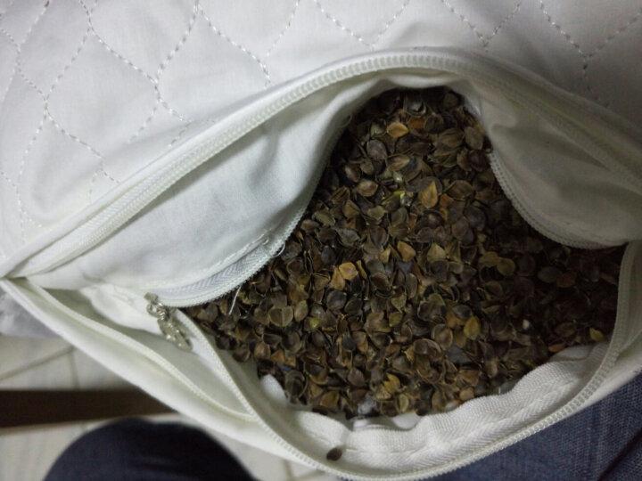 华康 枕头 全棉荞麦枕 酒店卧室枕芯 高度可调节枕头 晒单图