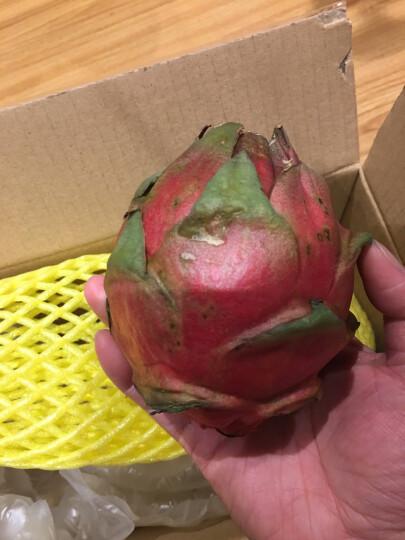 国产红心火龙果  2个装大果  单果约400~550g 新鲜水果 晒单图