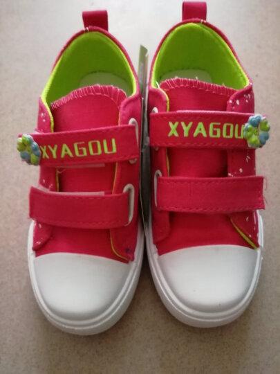 慧宏迪 女童鞋儿童帆布鞋大童运动鞋休闲鞋布鞋宝宝板鞋学生球鞋 浅蓝色 32码/内长19.3cm 晒单图