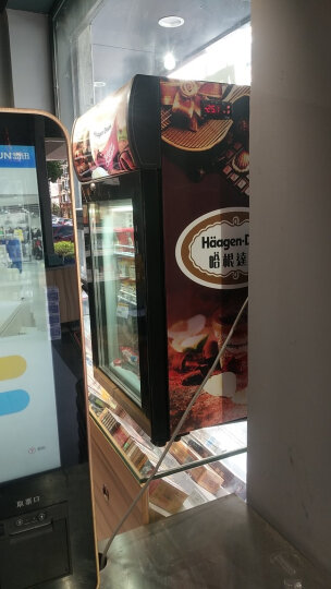 捷盛(JS) 立式冰淇淋冷冻展示柜50L小型冷柜玻璃单门冰吧 迷你哈根达斯榴莲冰箱 黑色 哈根达斯贴图 晒单图