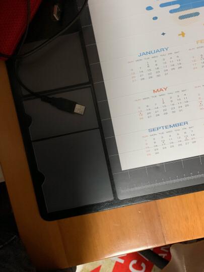 昕科电脑桌垫 办公桌垫pvc桌布鼠标垫超大写字桌垫防水垫 风格款-火烈鸟粉 晒单图