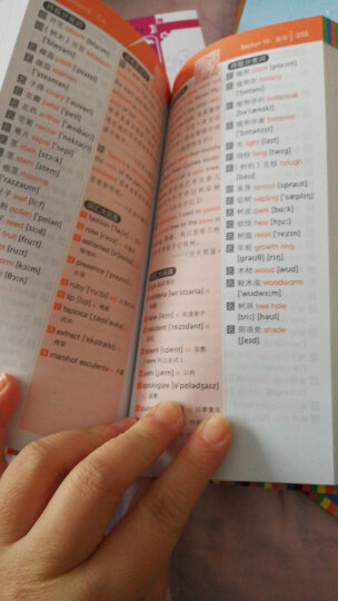 【赠音标手册】15000英语单词口袋书 分类背单词 英语单词词汇速记大全常用分类词根词缀记忆法  晒单图