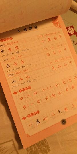 字帖 小学生写字课课练:一年级下册 同步人教版语文教材 晒单图