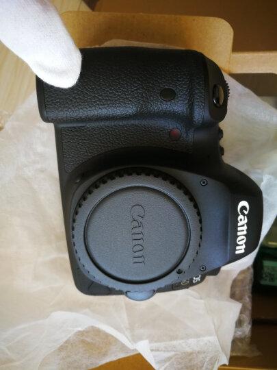 佳能(Canon)EOS 6D2/6D Mark II 全画幅数码单反相机 EF 24-105/4L IS II USM套装 晒单图