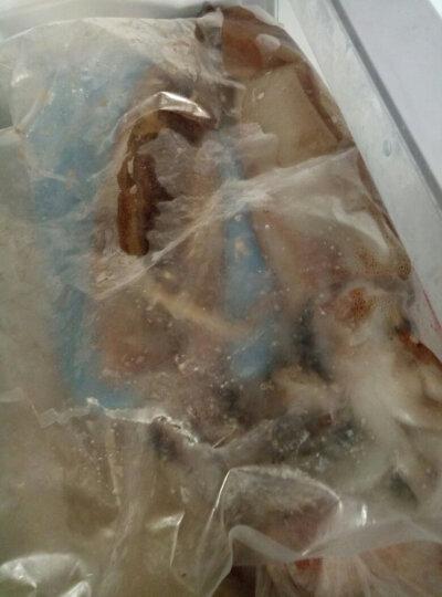 [两份包邮第二件9折]鱼宙飞船 青岛冰鲜大鱿鱼 700g-800g 2-3条 晒单图