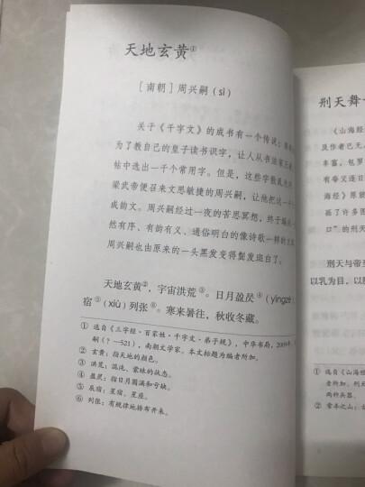 老奶奶的小铁勺 人教版语文素养读本 拓展语文阅读 温儒敏编 北大语文教育研究所组 小学6 三下    晒单图